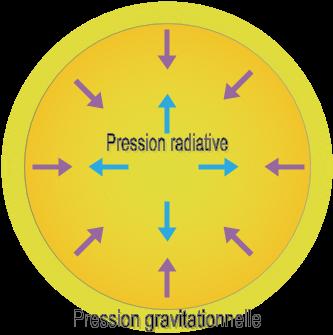 Équilibre hydrostatique d'une étoile stable. Les forces de pression radiative et de gravitation se compensent. [Source : Physique & Réussite]