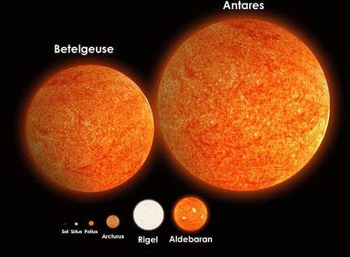 Voici à titre indicatif une petite comparaison de tailles entre différentes étoiles. On voit que le Soleil est la plus petite étoile puisqu'il est presque invisible. Cependant, on a du mal à imaginer que Antarès et Bételgeuse sont à peine 15 fois plus lourdes que le Soleil. Effectivement, leur diamètre équivaut à plus de 800 fois celui du Soleil. Cependant ces deux étoiles ne font pas partie de la séquence principale, leur anatomie est un peu plus complexe que ce que j'expliquerai dans la suite. [Source : Astrosurf]